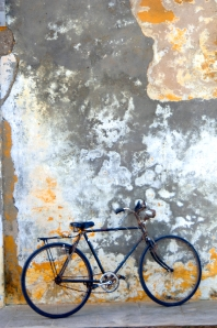 glenns bicycle ilha